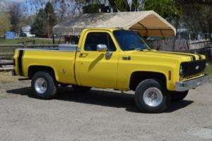1975 Chevrolet Other Pickups