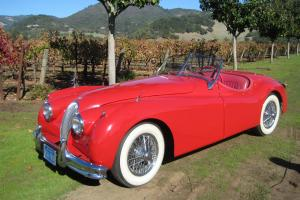 1954 Jaguar XK 120 MC Roadster Photo