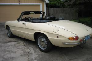 1969 Alfa Romeo 1750 Duetto Spider - Excellent Example of a Collectible Classic