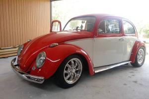 1963 Classic Beetle Show Real Nice  obo cash