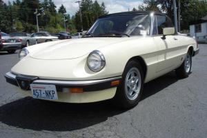 1983 Alfa Romeo Veloce Spider 49,832 miles Same Family Owned since NEW