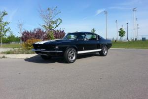 Ford : Mustang Fastback With Shelby Feature