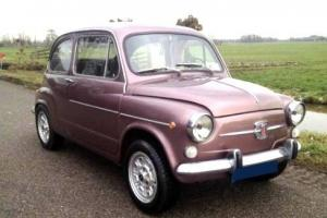 SPECIAL 1973 FIAT 600L FULLY RESTORED BY CLASSIC FIAT SPECIALISTS