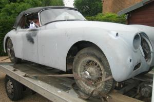 Jaguar XK 150 DHC  Photo