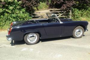 1962 Austin-Healey Sprite MKII  for Sale