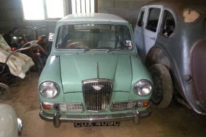 WOLSELEY HORNET GREEN/WHITE