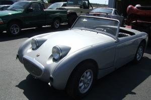 1959 BUG EYE SPRITE Austin Healey Photo