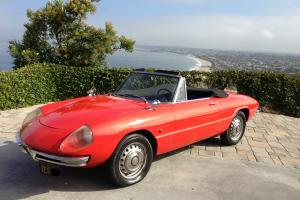 "1967 Alfa Romeo Duetto 1600 Boat Tail Spider Convertible of ""The Graduate"" movie"