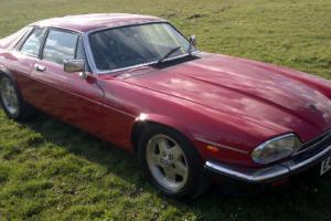1987 Jaguar XJ-S 3.6 Auto Coupe  Photo