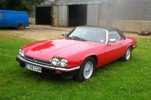 1987 Jaguar XJS Convertible  Photo