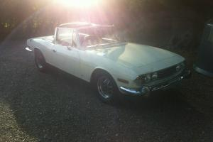 TRIUMPH STAG WHITE  Photo