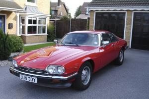 1983 JAGUAR XJS HE  Photo