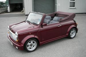 1991 MINI LAMM CABRIOLET  Photo