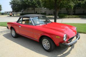 "1981 FIAT SPIDER ""TURBO"""