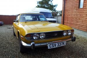 TRIUMPH STAG YELLOW