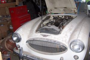 1961-62 Austin-Healey Roadster Photo
