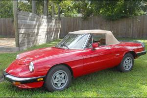 1988 ALFA ROMEO SPIDER Complete Nut and Bolt Restoration