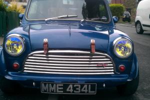 classic mini modified tax exempt