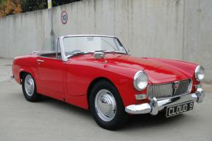 MG/ Midget -1964  Photo
