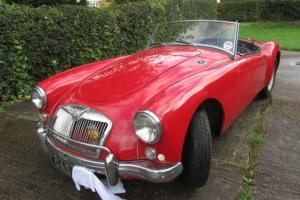 mga 1500 roadster, ex South Africa  Photo