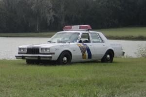 1986 Dodge Diplomat Police Car Photo