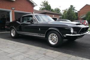 Ford : Mustang SHELBY GT350