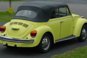 null Convertible Beetle