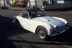 TRIUMPH TR4 1964 WILDCAT SPECIAL  Photo