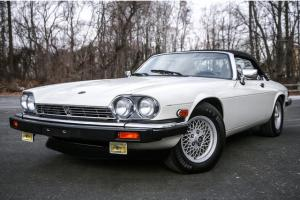 1989 Jaguar XJS V12 Convertible 38K MI Florida Car Serviced RARE Collectible Photo