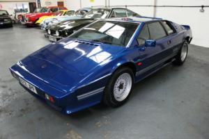 Lotus Esprit Turbo 1984 Classic Lotus Elan Stunning Colour And Condition