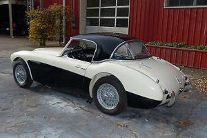 Austin Healey 3000 Mark II tri carb Photo