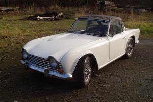 TRIUMPH TR4 1964 LHD WILDCAT SPECIAL Photo