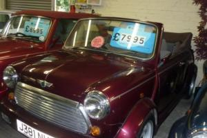 Rover MINI LAMM CONVERTIBLE