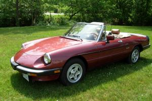 Alfa Romeo Spider Veloce  1988 low mileage (42,500), clean great running Alfa