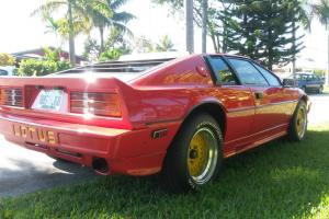 1985 Lotus Esprit Turbo Fully Restored Photo