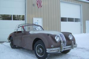 Jaguar 1956 XK140 Drop Head Coupe Photo