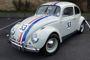 1963 VW Beetle Herbie lookalike, Transporter
