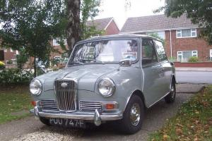 WOLSELEY HORNET GREY - 1968 Photo
