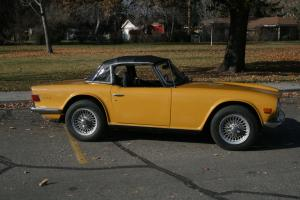 Triumph : TR-6 leather Photo