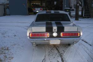 Ford : Mustang Pony