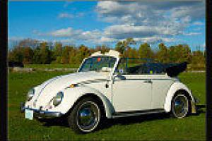 Be riding in this beautiful classic VW Beetle in time for spring!!!