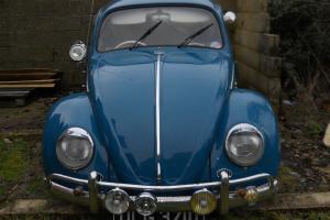 RESTO CAL LOOK VW BEETLE 1966 .1 YEAR ONLY ISSUE