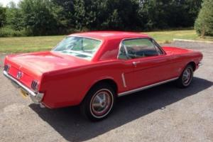 Ford Mustang 1965 Notchback in Candy Red with correct Cream interior