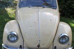 VW BEETLE - RARE SOUTH AFRICAN - PROJECT CAR - EARLY BUG? Photo