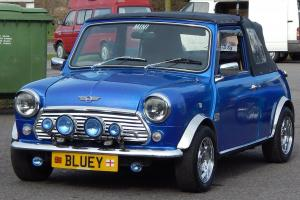 BLUEY Rover Mini and Trailer, Unique Something diiferent for the Summer......... Photo