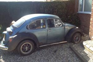 VW Beetle 1975 1303 project