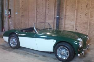 VERY RARE AUSTIN HEALEY 100 HALDANE ROADSTER - MOT`D AND READY FOR SUMMER...