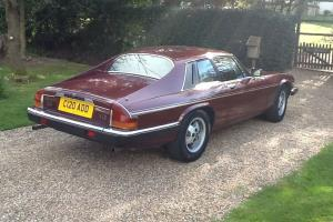 1986 Jaguar XJS V12 HSE Photo