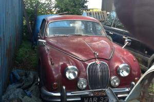 Jaguar mk 2 WAR 331E Photo