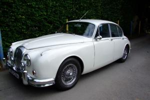 Daimler V8 2.5 not Jaguar MK2 Photo